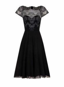 Womens *Chi Chi London Cap Sleeve Tea Dress - Black, Black