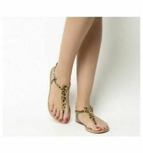 Office Samba Toe Post Sandals LEOPARD