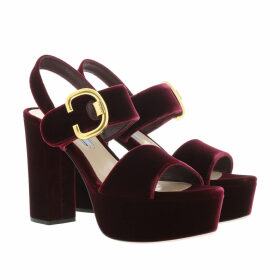 Prada Sandals - Gold Buckle Sandals Velvet Red - red - Sandals for ladies