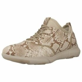 Geox  D CLASSIC LACE UP  women's Shoes (Trainers) in Other