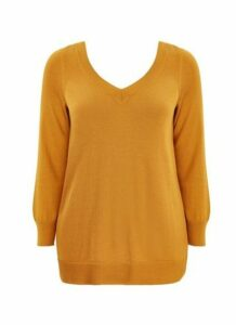 Mustard V-Neck Jumper, Others