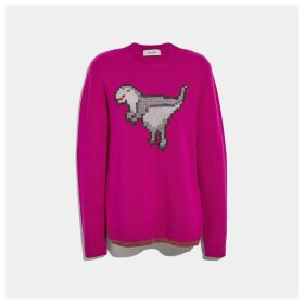 Coach Pixel Rexy Sweater