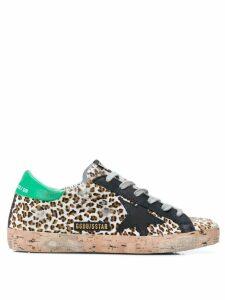 Golden Goose leopard Superstar sneakers - Brown