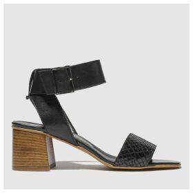 Schuh Black Charmer Low Heels