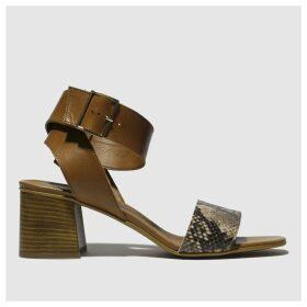 Schuh Tan Charmer Low Heels