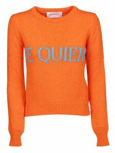 Alberta Ferretti Printed Sweater