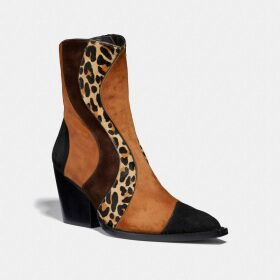 Coach Disney X Dumbo Jacquard Sweater