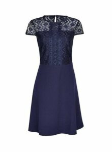 Womens Navy Scuba Lace Top Fit And Flare Dress - Blue, Blue