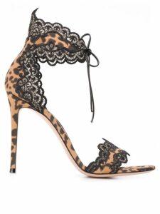 Gianvito Rossi lace trim leopard sandals - Black