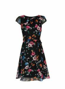 Womens Billie & Blossom Short Sleeve Floral Print Skater Dress - Black, Black