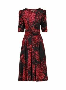 Womens Jolie Moi Black Printed Skater Dress, Black