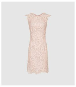 Reiss Roxanda - Lace Bodycon Dress in Blush, Womens, Size 16