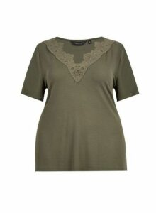 Womens **Dp Curve Khaki Lace V-Neck Top, Khaki