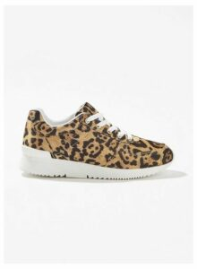 Womens Tate Leopard Panel Detail Trainers, MULTI