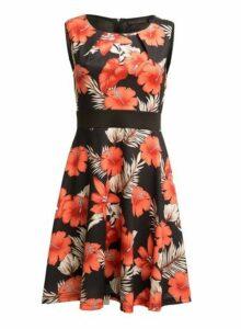 Womens *Tenki Black Floral Print Skater Dress- Black, Black