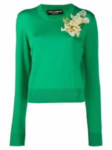 Dolce & Gabbana ribbed knit jumper - Green