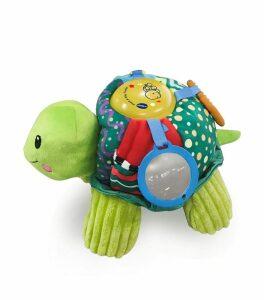 Peek And Play Turtle