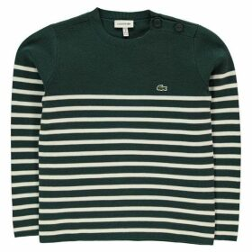 Lacoste Stripe Knit Jn92