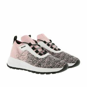 Prada Sneakers - Prax 01 Knit Sneakers Alabastro/Nero - rose - Sneakers for ladies