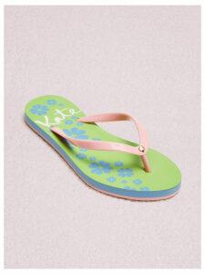 Natal Flip-Flop Sandals - Grapefruit - 3.5 (Us 6)