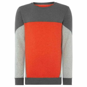 ONeill Blocked sweatshirt