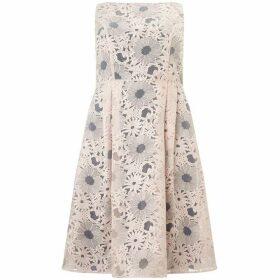 Studio 8 Alida dress