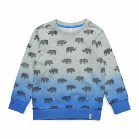 Esprit Toddler Boy Sweatshirt