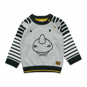 Esprit Baby Boy Jumper