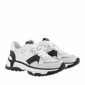 Coach Sneakers - Runner With Glitter Dusted Suede White/Silver - colorful - Sneakers for ladies