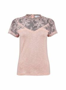 Womens Petite Blush Lace Insert Top- Pink, Pink