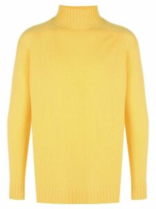 The Elder Statesman Highland Turtleneck cashmere sweater - Yellow