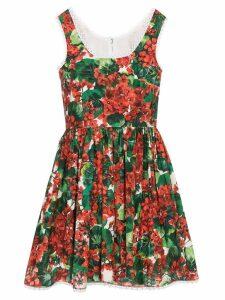 Dolce & Gabbana Portofino-print mini dress - Red