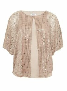 Blush Sparkle Overlay Top, Blush