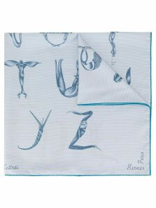 Hermès Pre-Owned Faune Lettree scarf - Blue