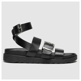 Schuh Black Sunshine Sandals