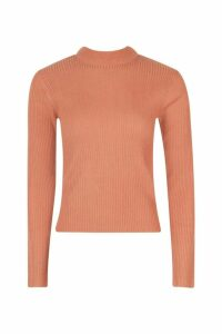 Womens Petite Ribbed Roll Neck Jumper - orange - L, Orange