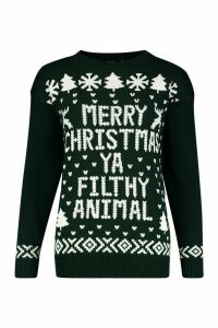 Womens Merry Christmas Ya Filthy Animal Jumper - green - S/M, Green