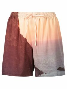 Esteban Cortazar bathing shorts - Brown