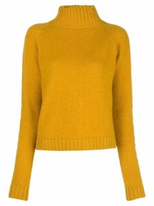 The Elder Statesman cashmere roll neck jumper - Yellow
