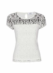 Womens Petite Ivory Lace Top- White, White