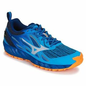 Mizuno  WAVE IBUKI GTX  women's Running Trainers in Blue