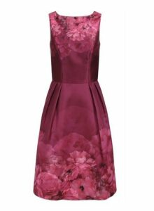 Womens *Chi Chi London Burgundy Floral Printed Midi Dress, Burgundy