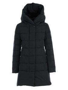 Woolrich Puffy Prescott Padded Jacket W/hood