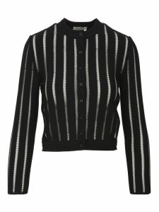 Alexander McQueen Stripes Elastic With Buttons