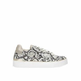 Miss KG Kamilla - Snake Print Lace Up Trainers