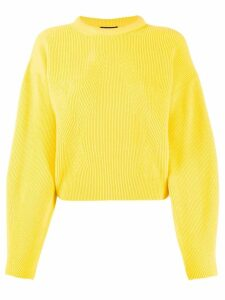 Canessa ribbed design jumper - Yellow