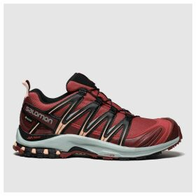 Salomon Red Xa Pro 3d Gtx Trainers
