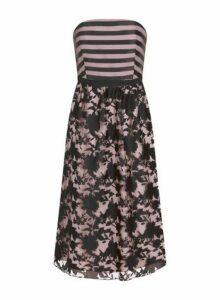 Womens **Little Mistress Black Monochrome Stripe Print Bandeau Midi Dress, Black