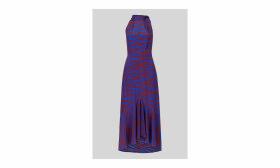 Peria Tiger Print Silk Dress