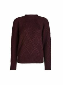 Womens Oxblood High Neck Cable Knitted Jumper- Red, Red